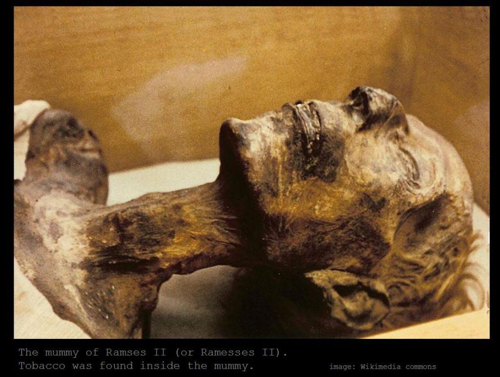 ramessou-mummy-1-1024x772